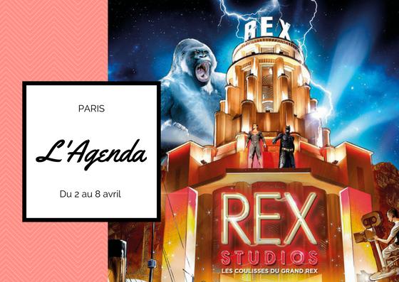 agenda Rex Studios