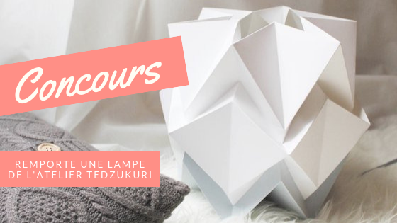 Concours Atelier Tedzukuri