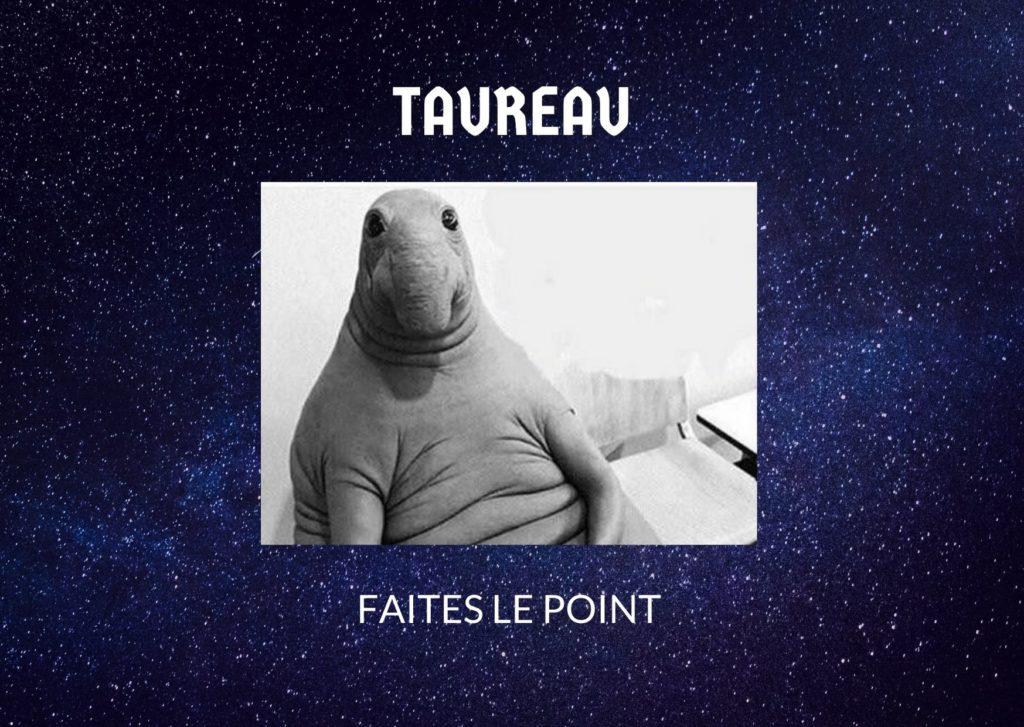 Taureau : votre horoscope de novembre 2020 par strawberryblonde.fr